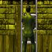 UnityのIKを使ってキャラクターがはしごを登るアニメーションを作る